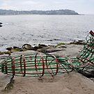 Zeppelin Crash @ Sculptures By The Sea 2012 by muz2142