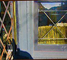 Window-Wheat by djohn