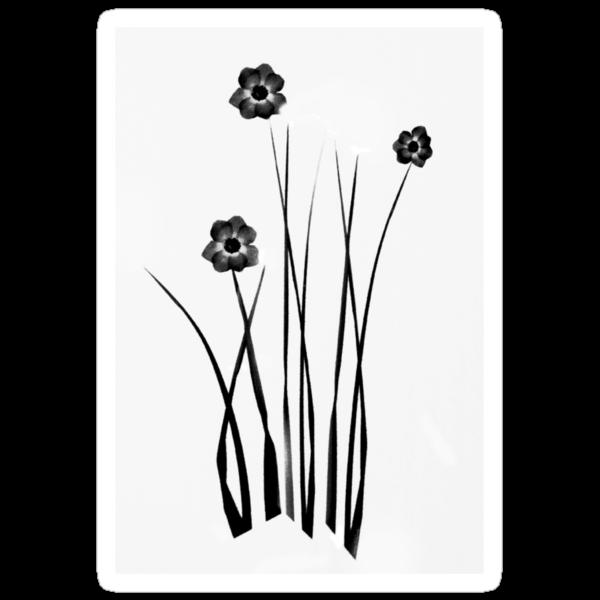 Kathie McCurdy Zen Black & White Flowers by Kathie McCurdy