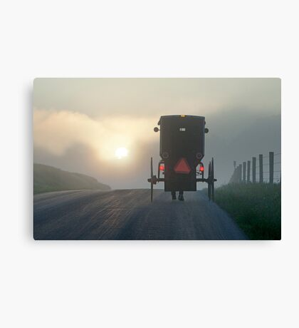 Into the Morning Mist Canvas Print