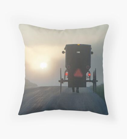Into the Morning Mist Throw Pillow
