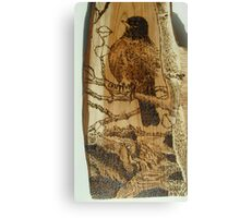 scouting robin Canvas Print