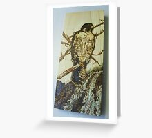 hawk lookout Greeting Card