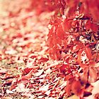 Autumn by ╰⊰✿Sue✿⊱╮ Nueckel