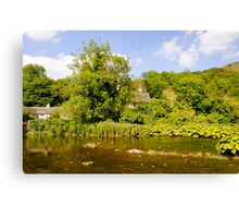 The River Wye at Upperdale  Canvas Print