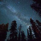 Cabin Stars by Ryan Wright