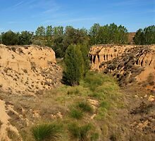 Little Canyon by photoshot44