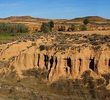 The Prairie by photoshot44