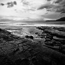 Tessellated Pavement by Nathan Waddell
