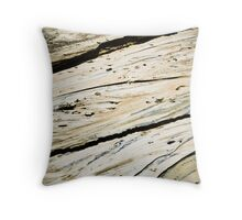 Stream colors Throw Pillow