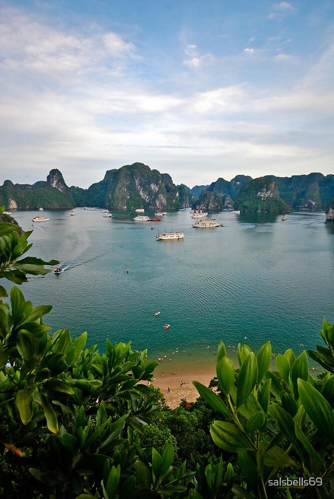 Ha Long Bay by salsbells69