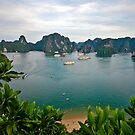 Ha Long Bay by salsbells69