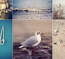 Beach Impressions Collage °2 by syoung-photo