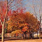 Autumn At Dusk by Linda Miller Gesualdo
