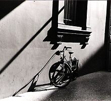 Bicycle @ Bologna by NaRKoS