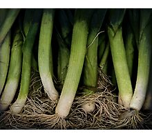Lots Of Leeks Photographic Print
