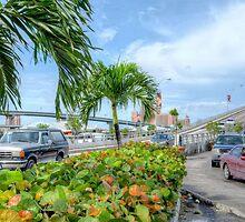Paradise Island Bridge over Potter's Cay in Nassau, The Bahamas by Jeremy Lavender Photography
