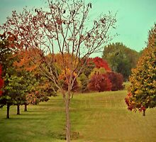 Nature coloring trees Grundgy Style by Linda Miller Gesualdo