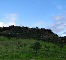 Cojitambo Ecuador Inca Ruins by Al Bourassa