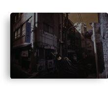 Guts In Tokyo Canvas Print