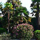 Palm Garden by Art-Motiva