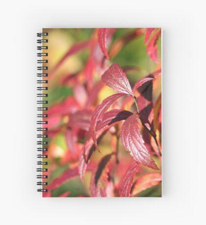 Crimson Autumn Spiral Notebook