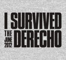 I Survived the June 2012 Derecho by fatdogcreatives