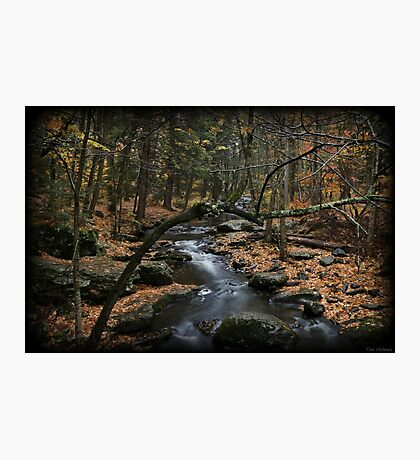 Childs October Photographic Print
