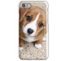 Puppy Dog Eyes iPhone Case/Skin