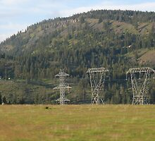 Power Lines by Adasyd