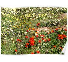 Dis heerlike lente...! Poster