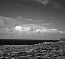 Ireland in Mono: I Tend To Dream by Denise Abé