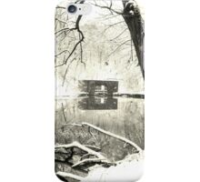 winter solace iPhone Case/Skin