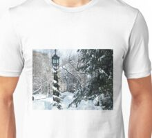 City Hall Park in Snow, New York Unisex T-Shirt