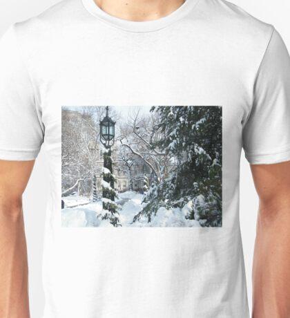 City Hall Park in Snow, New York T-Shirt