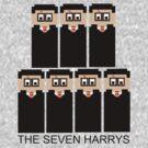 The 8 Bit 7 Potters by FandomPeasantry
