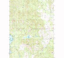 USGS Topo Map Washington State WA Moon Mountain 242397 1985 24000 by wetdryvac