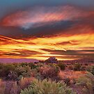 Palomino Valley Pre-Sunrise by SB  Sullivan