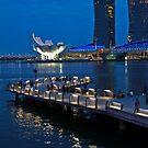 Marina Bay, Singapore by Tamara Travers