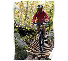 Biking Down the Bridge Poster