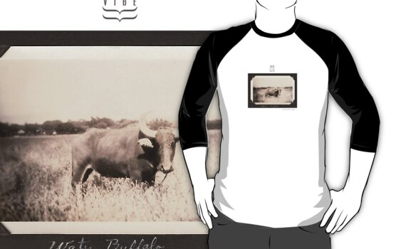 neovibe.us | water buffalo by neovibe