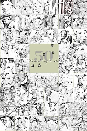 50 shades of Greyt Hounds by GreyhoundSN