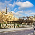 Seine Bike Ride - Notre Dame de Paris by Mark Tisdale