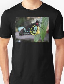 Colorful Butterfly on Leaf  Unisex T-Shirt