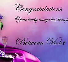 Violet & Crimson Proposed Banner by Morag Bates