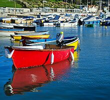Colourful Harbour ~ Lyme Regis by Susie Peek