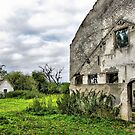 Ruins  De Uijlenburgh  by ienemien