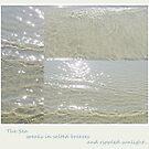 Songs of the Sea... by LindaR