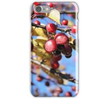 Berry Spring iPhone Case/Skin