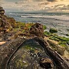 Rock Pool View by Daniel Carr